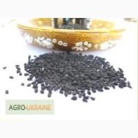 Продам чёрный тмин сорт Nigella Sativa