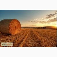 Услуги по тюкованию соломы и сена по Украине