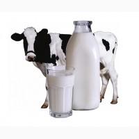 Куплю молоко свежее цельное