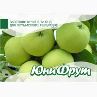 Покупаем яблоки оптом для промышленной переработки