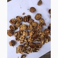 Продам грецкий орех нового урожая