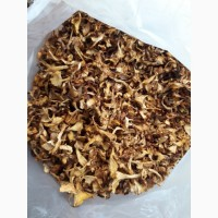 Продам гриби лисички сушені