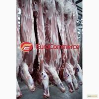 Полутуша свиная обезжиреная