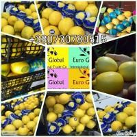 Продам лимоны оптом с Турции