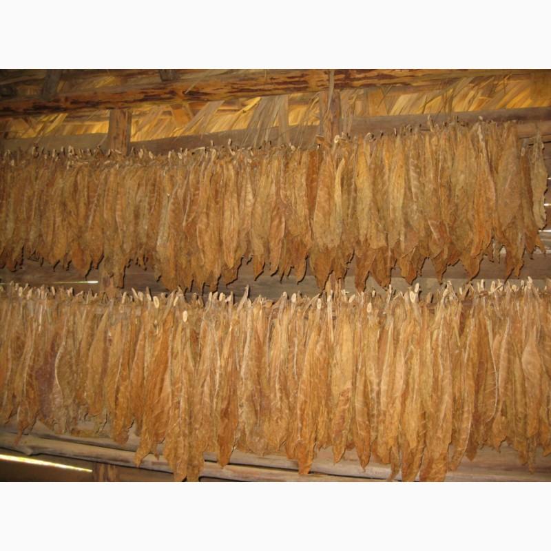 Купить табак листовой оптом табачные изделия и зажигалки