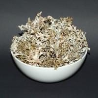 Ісландський мох (Карпати) 200грн. за кілограм