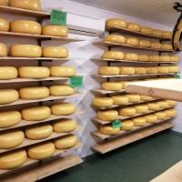 Сир, Бринза, Сулугуні, Чечіл, Гауда, Масло, Вершки-натур продукт, з високоякісного молока