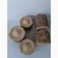 Реализуем брикеты из деревьев лиственных пород