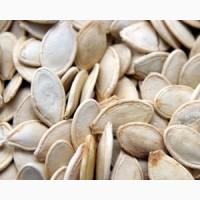 Семена тыквеных
