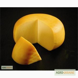 Твердый Сыр Оптом, Европейское качество, Днепропетровская обл