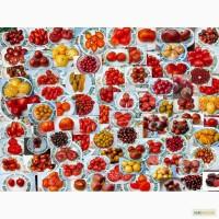 Семена помидор томатов и острый перец. 200 сортов