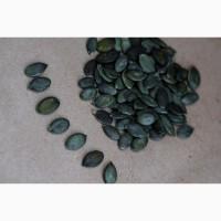 Купуємо гарбузове насіння по всій Україні, сорт Госім#039;яна