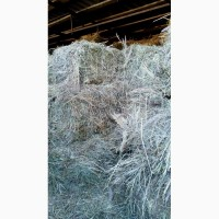 Продам прекрасное луговое сено