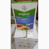 Антракол - захист томатів, огірків, картоплі, садів та виноградників