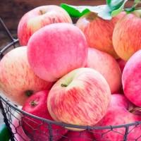 Продам яблука Рожевий налив