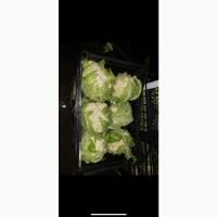 Продам цветную капусту, брокколи.Происхождение Албания