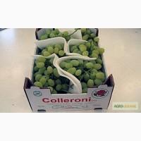Ящики для Винограда