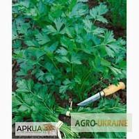 Продам весовые и пакетированные семена Листовой, корневой и кудрявой Петрушки