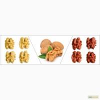 Куплю Грецкий орех, семена тыквы, фасоль