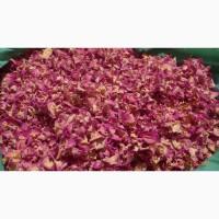Продам лепестки чайной розы