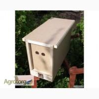 Продам безсотові бджолопакети карпатської породи