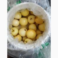 Продам мочёные яблоки