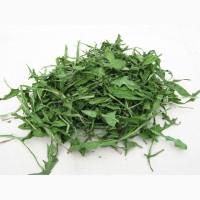 Одуванчик (трава) 1 кг