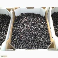 Продам ягоды чёрной смородины