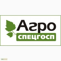 Саженцы смородины Gofert, Ruben, Ores, Tines, Tiben, Ben Tron, Ben Hope