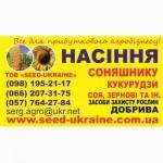 Продам насіння соняшнику