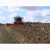 Услуги по уборке подсолнуха кукурузы сои Днепр обработка земли посев
