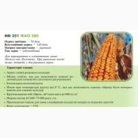 Насiння кукурудзи МВ 251 (ФАО 280) ДЦ Академії Наук Угорщини м.Мартонвашар