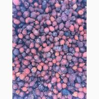 Продам сухие плоды шиповника темно-красного цвета, боярышник урожай 2018