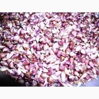 Продам семена чеснока - воздушка и зубок