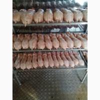 Продам мясо кролика на постоянной основе