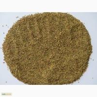 Донник желтый (буркун), семена, медонос