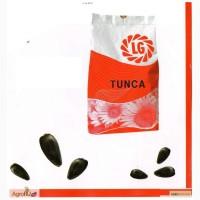 Подсолнечник семена Тунка
