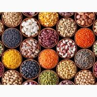 Куплю бобовые культуры от сельхозпроизводителей