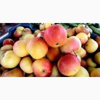 Продадим сладкое яблоко, крупным оптом