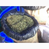 Табак Вирджиния. Урожай 2018 Отличное качество. Оптом и в розницу