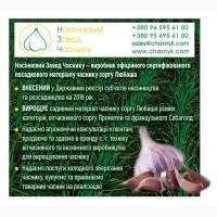 Продамо сертифікований садивний матеріал часнику сорту Любаша