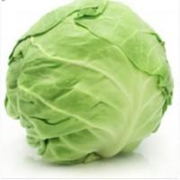 Продам Капусту на экспорт. Cabbage from Ukraine