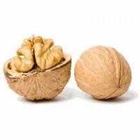 Закупаем орех грецкий в скорлупе на постоянной основе