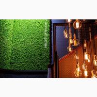 Стабилизированный мох ягель на панелях