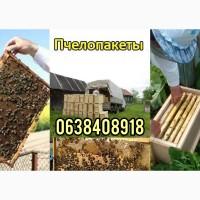 Продам пчелопакеты 2021