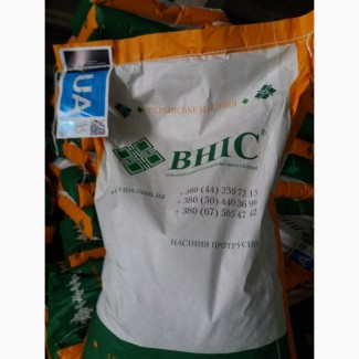 Продам гібрид кукурузи ВН 63 (урож.2018 р.)