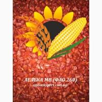 Насіннєвий матеріал кукурудзи ЛЕЛЕКА МВ (ФАО 260)