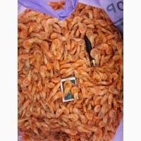 Гамуз креветка, крабы черноморские