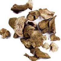 Марьин корень (корень пиона) 50 грамм
