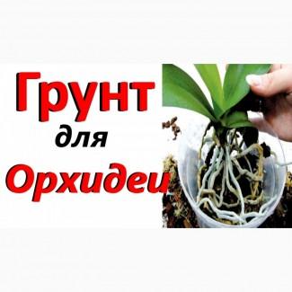Кора сосновая для орхидей и др. растений, декора, дешево 19 грн